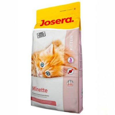ג'וסרה מינט- לגורי חתולים